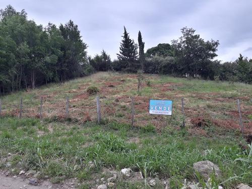Imagen 1 de 4 de Terrenos En Cuatro Horizontes