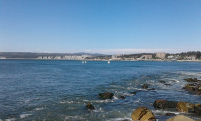 Algarrobo, Depto. 1 Dorm, 2 Adultos/1 Niño. Frente A Playa Yachting