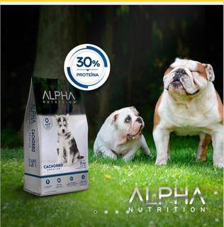 Oferta 10 Alpha Nutrition Cachorro 2kg Alimento Para Perro