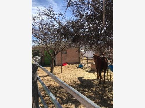 Finca/rancho En Venta En Casablanca