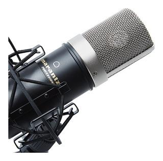 Microfono Condensador Marantz Mpm1000 C/accesorios - Cuotas