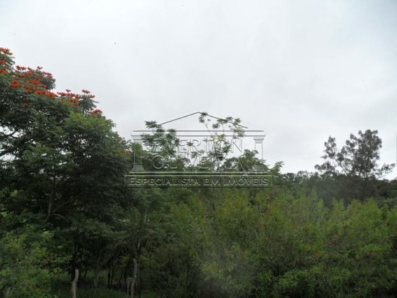 Chacara - Jardim Maria Amelia - Ref: 884 - V-884