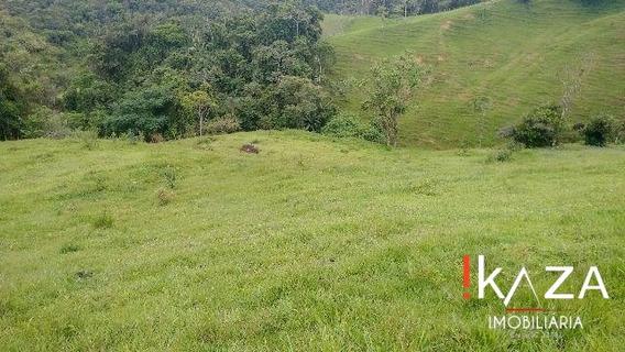 Terreno Rural Em Santo Amaro Imperatriz - 140.000 M² - 2348