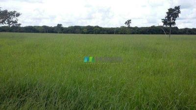 Fazenda - 350 Ha - Papagaios (mg) - Cod:: Mta531