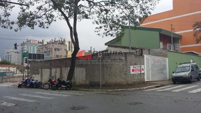 Terreno À Venda/aluguel, São Bernardo Do Campo/sp - 4405