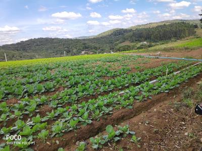 L. Residencial Rural, Terrenos Para Formação De Chácara