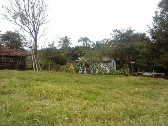 6 Alqueires 40 Km De Uberlândia