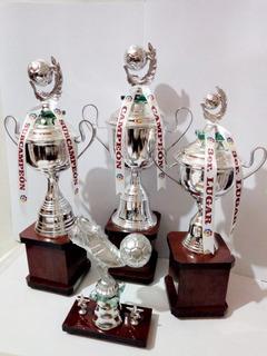 Trofeos De Futbol Tercia Economica