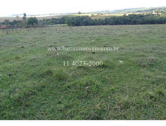 Terreno - Te00839 - 2650088