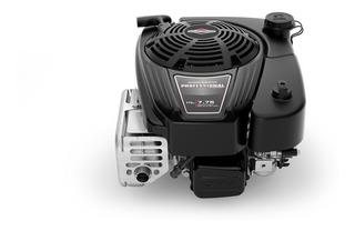 Motor Naftero Vertical Briggs & Stratton 7.75hp 25x80 175cc