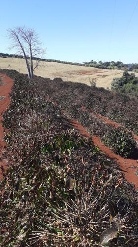 Imagem 1 de 1 de Serviço Rural