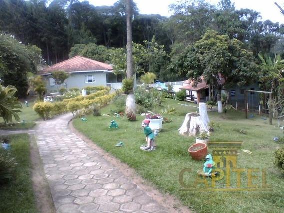 Sitio Estancia Sao Paulo Jarinu Sp Brasil - 989