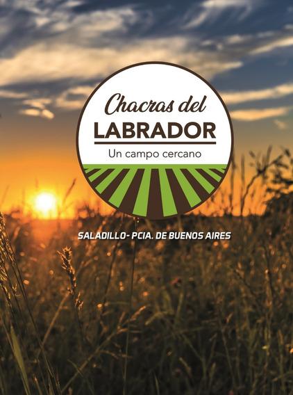 Compra Al Costo Chacras Del Labrador 75%vendido