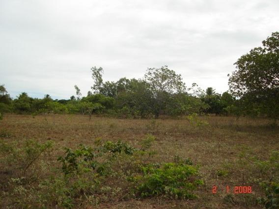 Terreno Em Pititinga Na Beira Da Lagoa