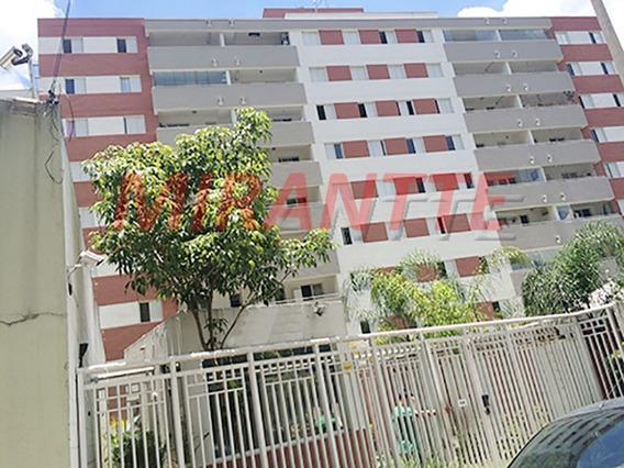 Apartamento Em Vila Amelia - São Paulo, Sp - 305530