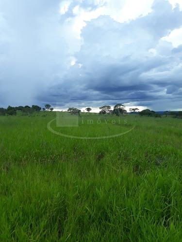 Imagem 1 de 13 de Oportunidade. Fazenda Pecuária Para Venda Em Gurinhata-mg, Região De Ituiutaba, Com 60 Alqueires Sp,  Terra Mista, Formada Em Pasto, Mina Dagua, Cerca - Fa00122 - 69310914