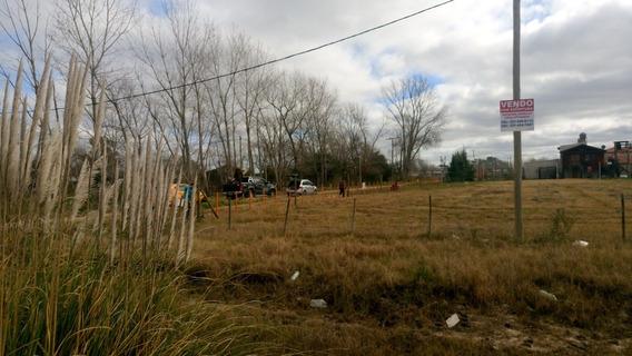 Terreno L Plata Abasto Sobre Ruta 215 Esquina 272 (9-142-11)