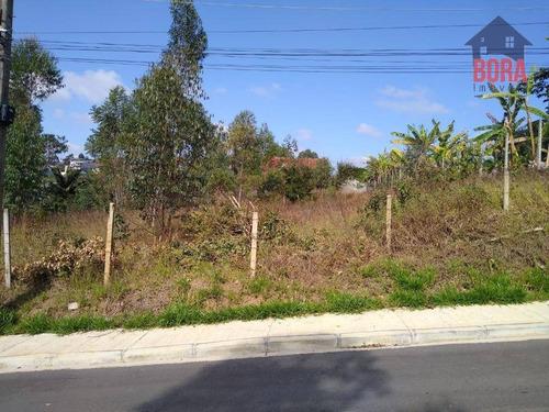 Imagem 1 de 7 de Terreno À Venda, 800 M² Por R$ 280.000,00 - Jardim Odorico - Mairiporã/sp - Te0324