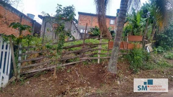 Terreno Residencial À Venda, Alvarenga, São Bernardo Do Campo. - Te0014