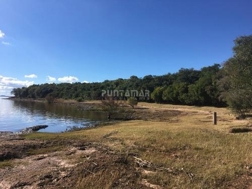 Venta De Excepcional Campo Sobre Río Uruguay- Ref: 211476