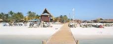 Full Day Isla De Coche Económico
