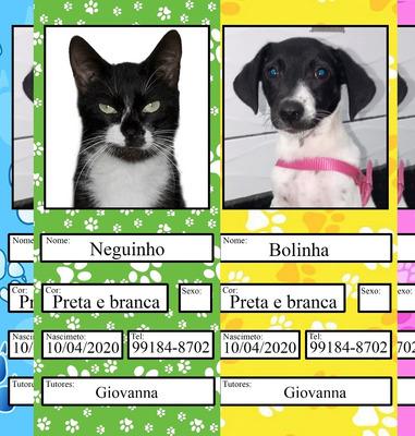 Carteira De Vacina Pet (cão E Gato) Personalizada - Pdf