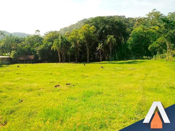 Acrc Imóveis - Terreno Em Gaspar, Com Área De 56.876,96 M² - Te00381 - 33663724