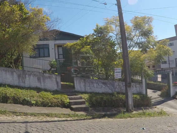 Casa - Operaria Nova - Ref: 339 - V-339