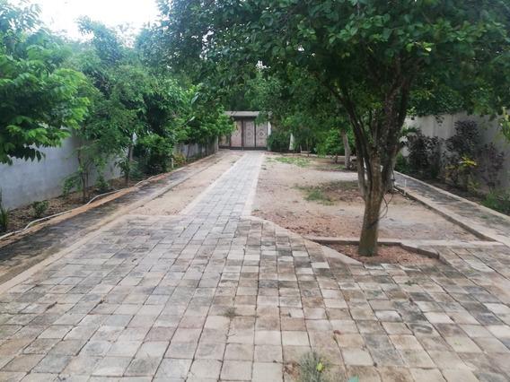 Casa Con Amplio Terreno En Mérida Yucatan