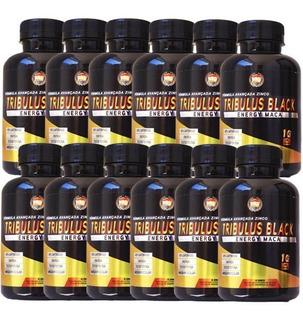 12x Tribulus Energy Maca 2g 60% Saponinas 120 Tabs (full)