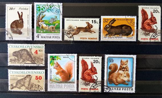 Fa 011 Selo Fauna Coelho Esquilo Mustela Castor Roedor