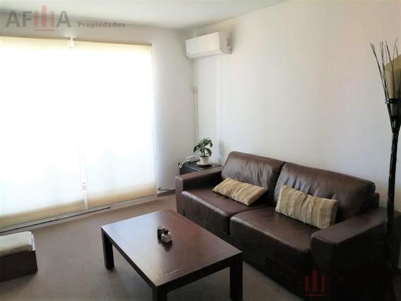 Venta Apartamento Dos Dormitorios Buceo Locación