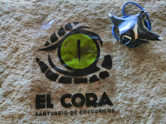 Collar Manta Gigante Santuario De Cocodrilos El Cora
