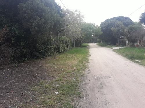 Imagen 1 de 4 de Venta Gran Lote Parque Peña