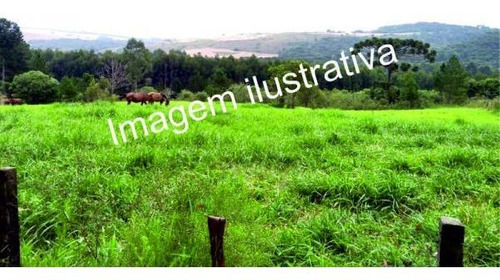 Imagem 1 de 1 de Mairinque/mato Dentro 1000m2