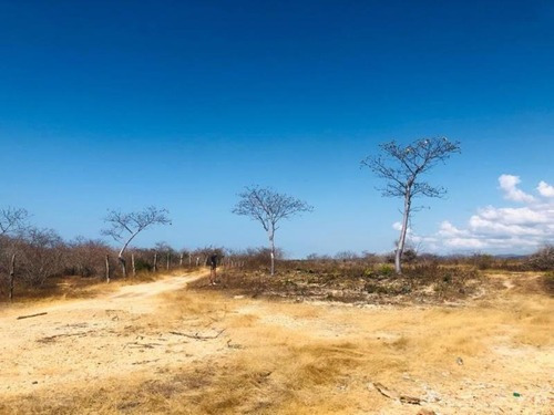 Terreno En Venta Santa Maria Tonameca