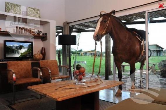 Complejo De Campo Casas Suites Y Lofts 3* 55 Has.