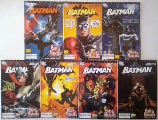 Batman Bajo La Capucha Completo Sd