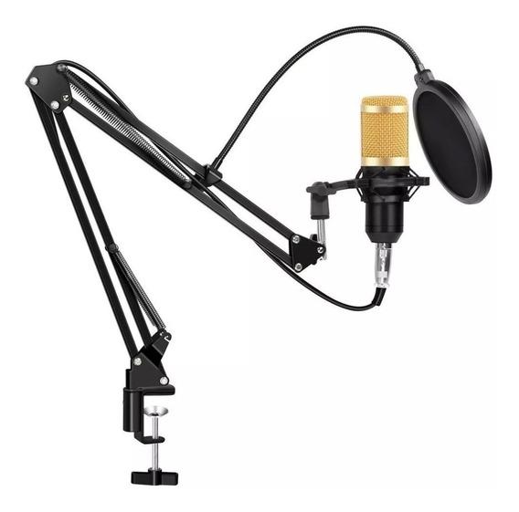 Microfono Condenser Gadnic Gd-800 Usb Estudio Grabacion