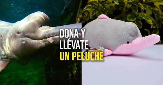 Peluche Delfín Wwf Colombia Conservación Donación Mínima