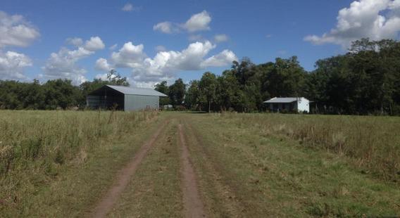 1200 Has - Campo Mixto En Venta. 0,8 Ev/ha. Lomas Agrícolas Clase Iii
