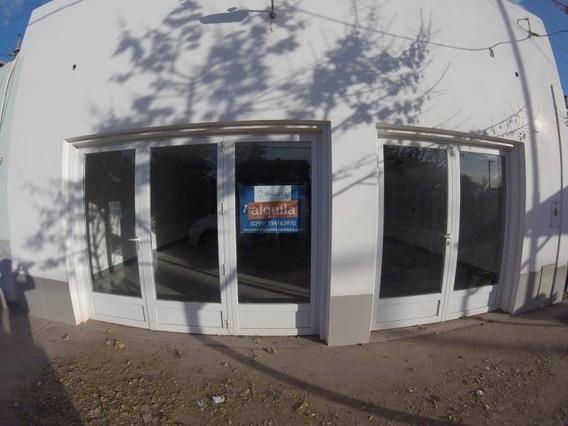 Locales Comerciales Alquiler Rincón De Los Sauces