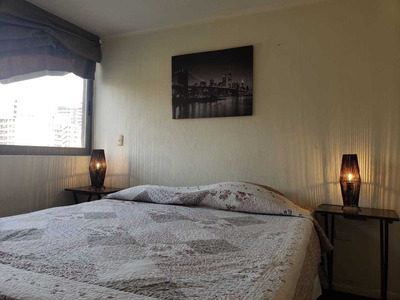 Amoblado 1 Dormitorio Excelente Ubicación (u De Chile)