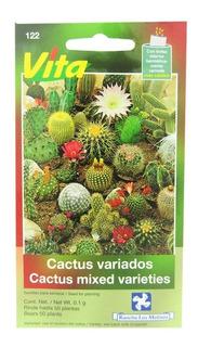 Semillas De Cactus, Sobre. Crea Tu Terrario. Regalo Original
