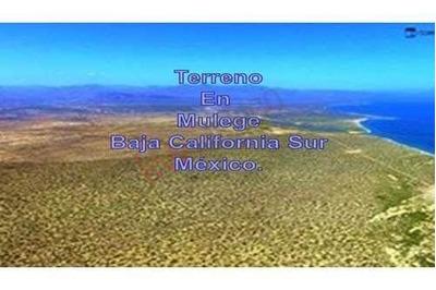 Inversionistas Magnifico Terreno En Mulege En Baja California Sur México