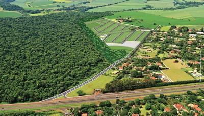 Terreno À Venda, 385 M² Por R$ - Quinta Do Bosque - Ribeirão Preto/sp - Te1601