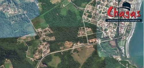 Imagem 1 de 1 de Área Entre Caraguatatuba E Ubatuba - 816