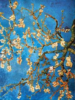 Cuadro Van Gogh - Almendro En Flor 50 X 70