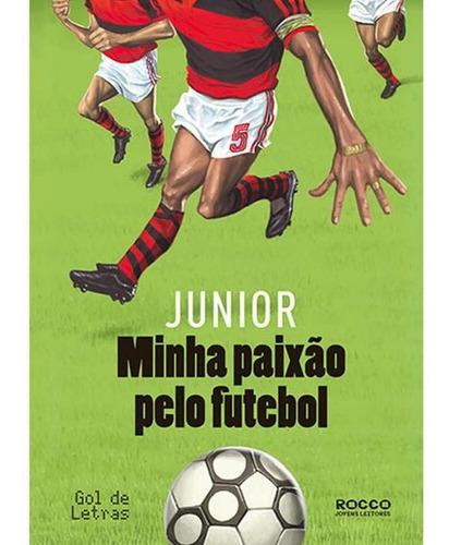 Imagem 1 de 1 de Minha Paixão Pelo Futebol