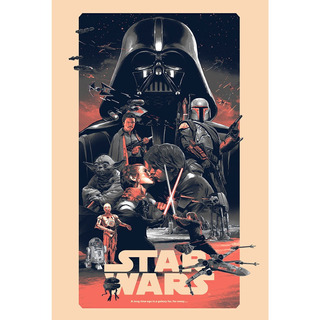 Placa - Decorativa - Grande - Star Wars - Filme - (gv166)